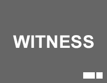 WITNESS-1A